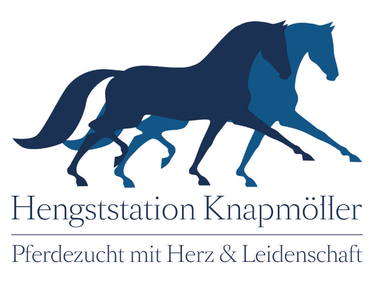 Hengststation Knapmöller Ascheberg